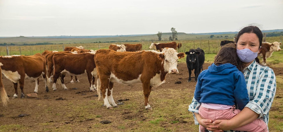 Vacas y mujer con niña.jpg