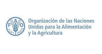 ONU_FAO.jpg