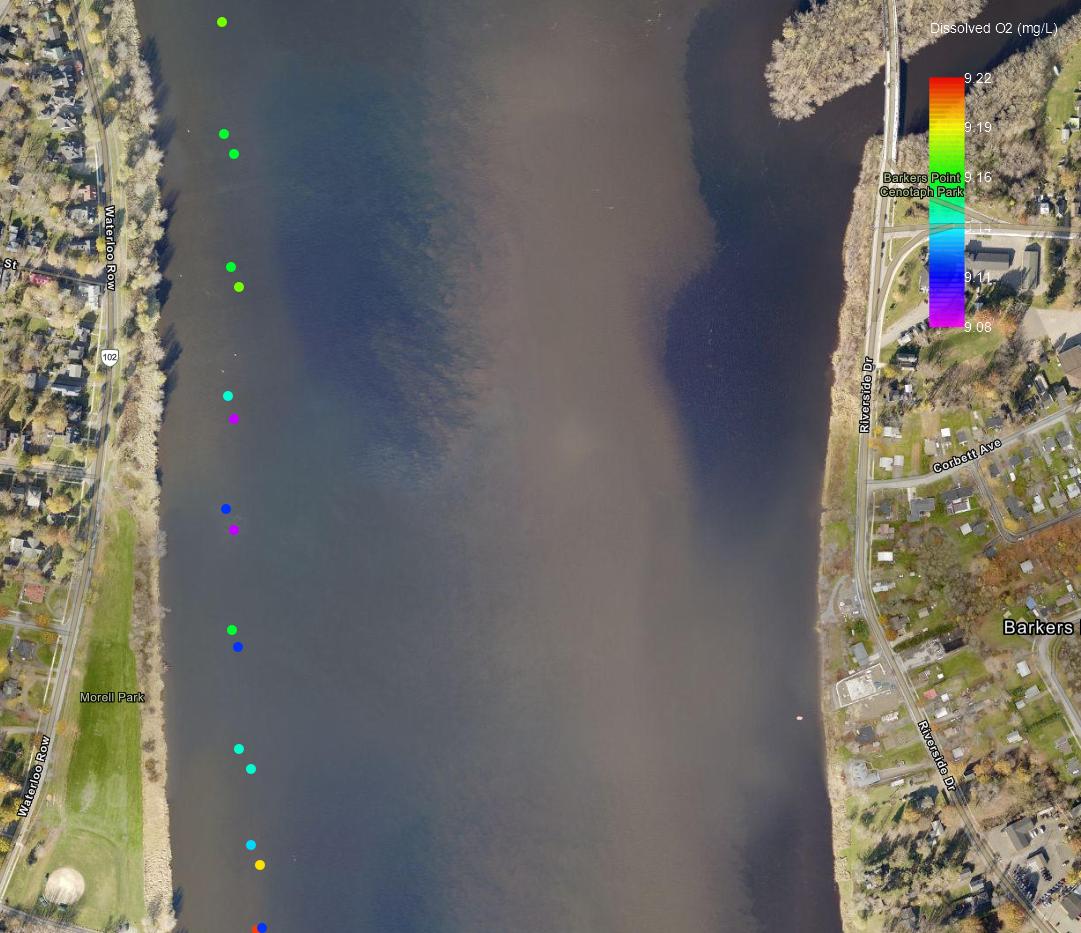 Dissolved O2 Data Downtown Fredericton, Aug. 08
