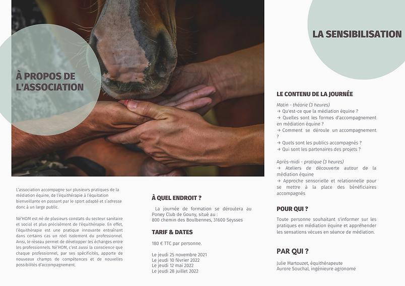 Flyer Sensibilisation Mediation Equine.png