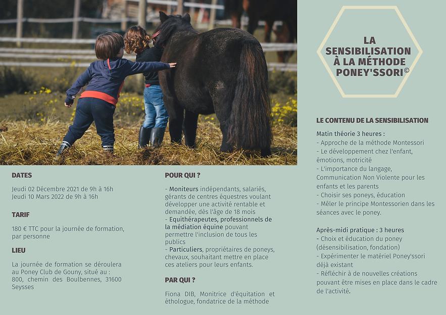 flyer poneyssori.png