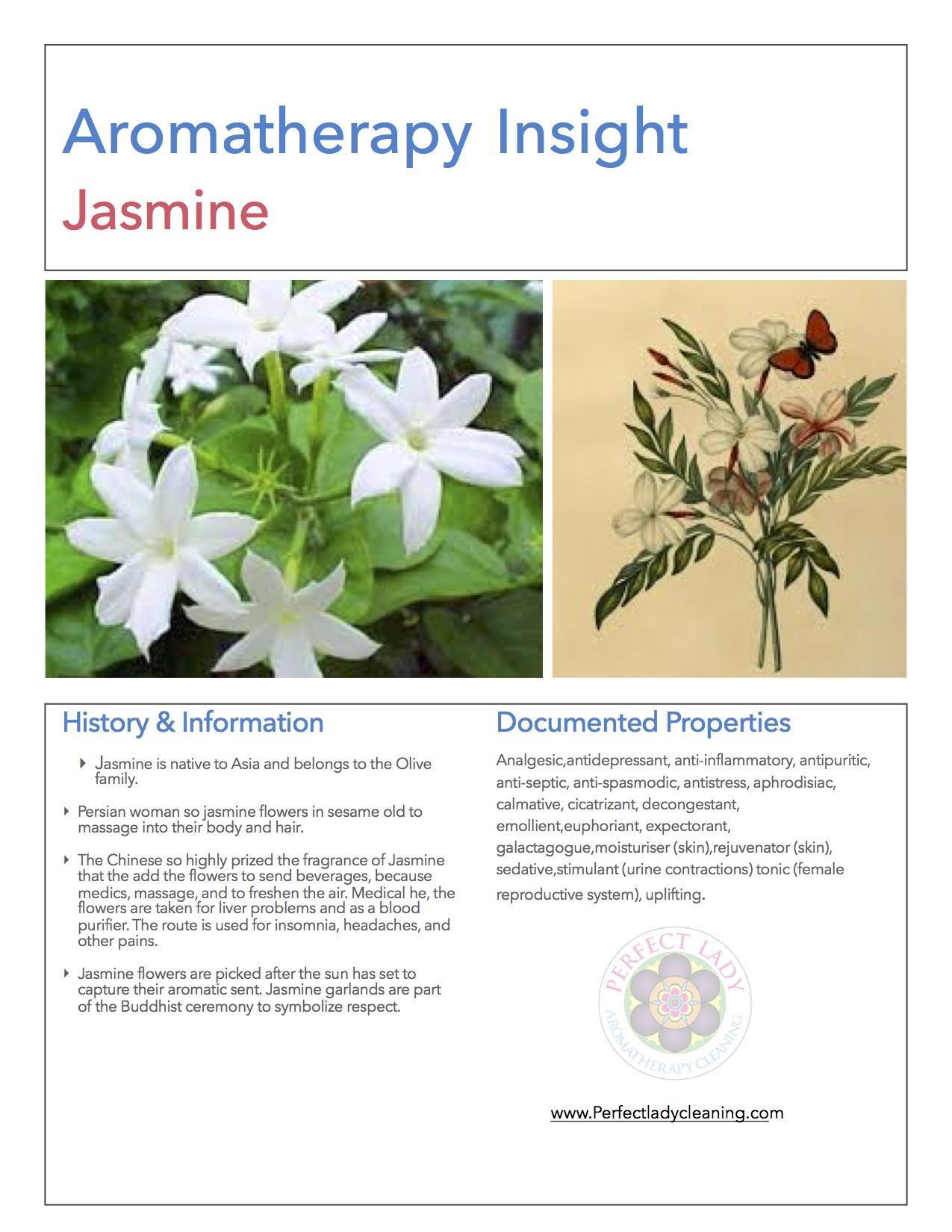 Jasmine book cleaning service izmirmasajfo