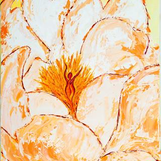 Experiential Bloom