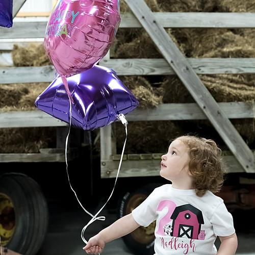 Hadleigh's 2nd Birthday