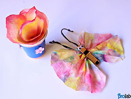 Dye Tie Coloring