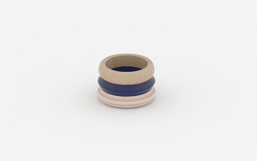 CKMT-ring-F1.jpg