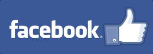 facebook die