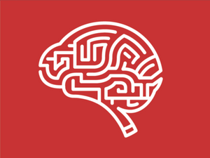 five strategies brain