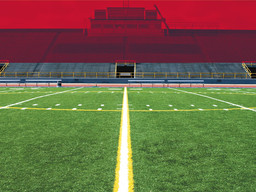 Health risks with artificial turf