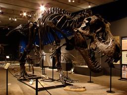 Cranbrook Institute of Science hosting dinosaurs