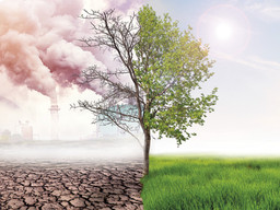 Environmental rules rollback attempts continuing
