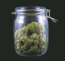 Big business favored on medical marijuana?