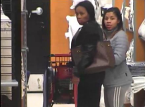 Women steal $400 worth of shoes