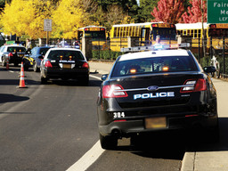 Local school safety: how well prepared are we?