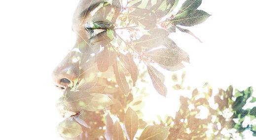 dreamstime_xxl_57702402.jpg