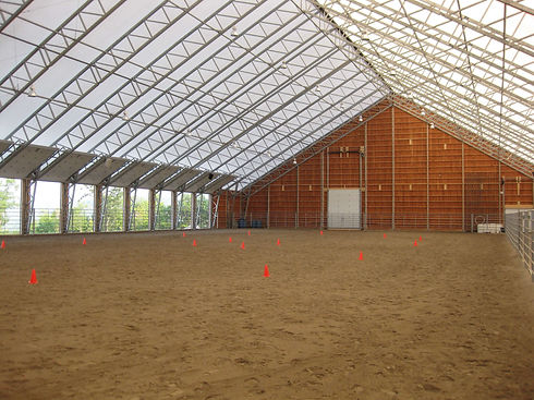 VP series 70x156 Equine Inside3.JPG