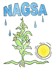 NAGA%20Logo%20Offical_edited.png