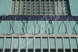 Concertina_Sensor_Eletrificada_Cerca_Elétrica_6-300x200