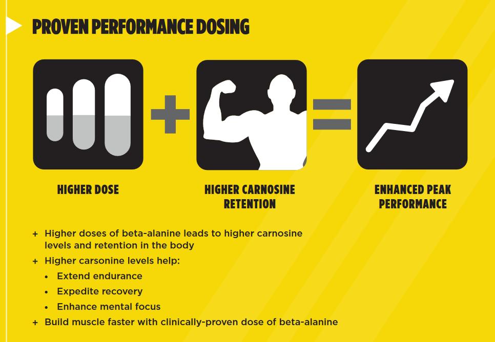 Carnosyn Beta-alanine dosing
