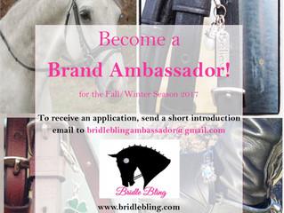 Brand Ambassador Program