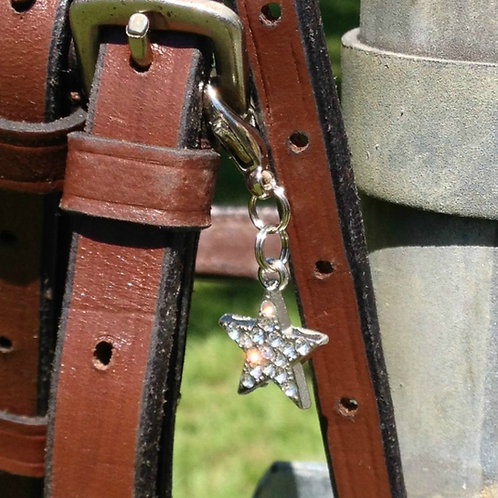 Star Light Star Bright Bridle Charm