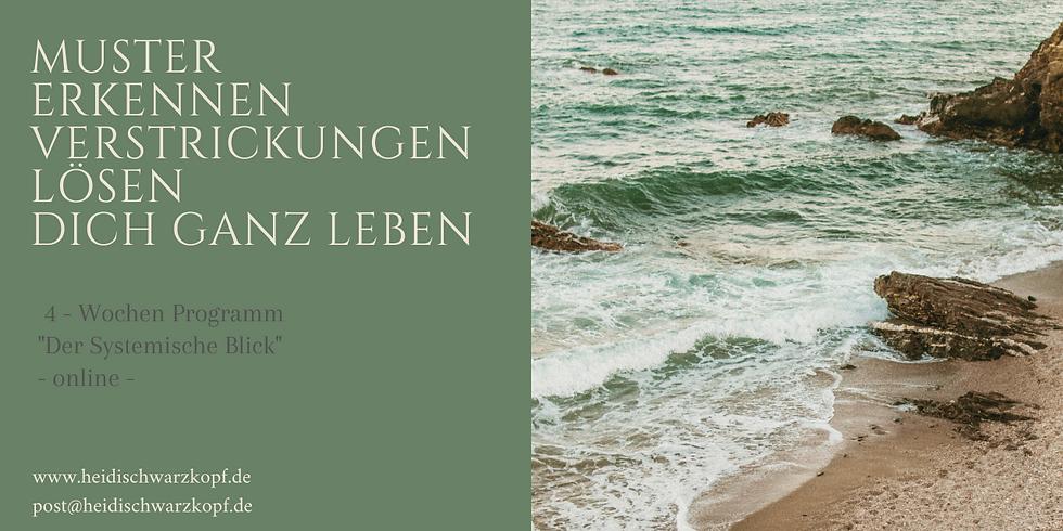 """""""Der Systemische Blick"""" 4 Wochen Programm - online -"""