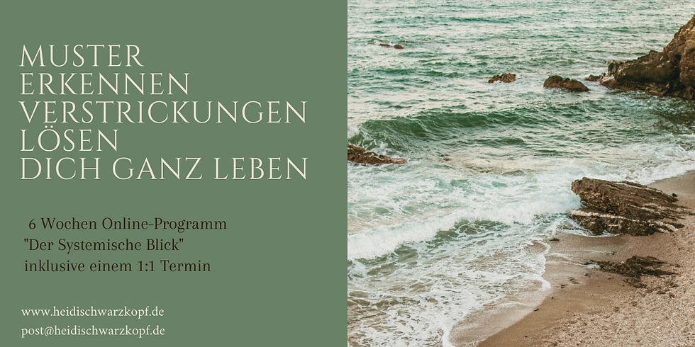 """""""Der Systemische Blick"""" 6 Wochen Online-Programm"""