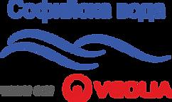 LogoSV_V.PNG