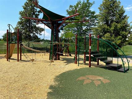 Cougar Run Park, Highlands Ranch, CO