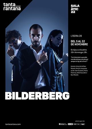 Cartellxxss_BILDERBERG.png