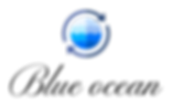 dark_logo_transparent_background[1].png
