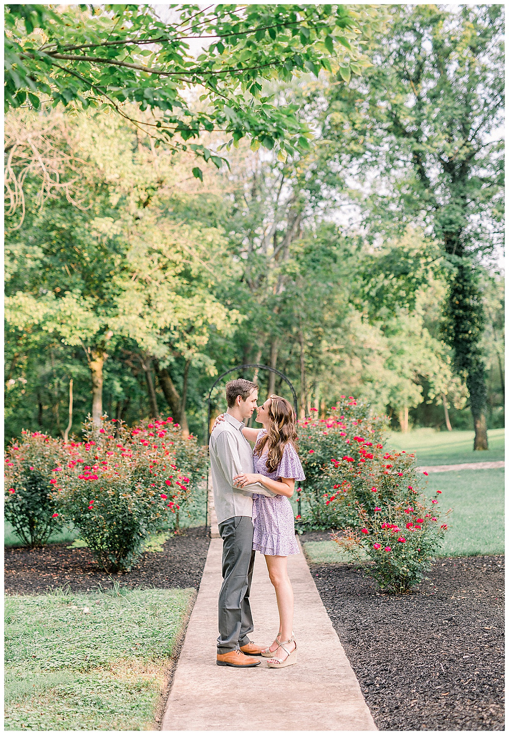An engaged couple posing in the rose bushes at Historic Shady Lane