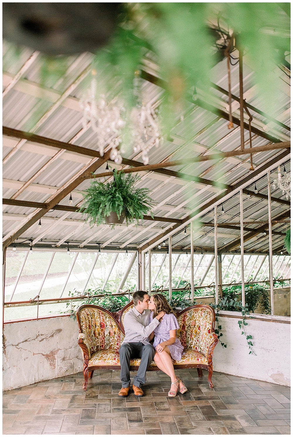 An engaged couple sitting in a greenhouse kissing at Historic Shady Lane