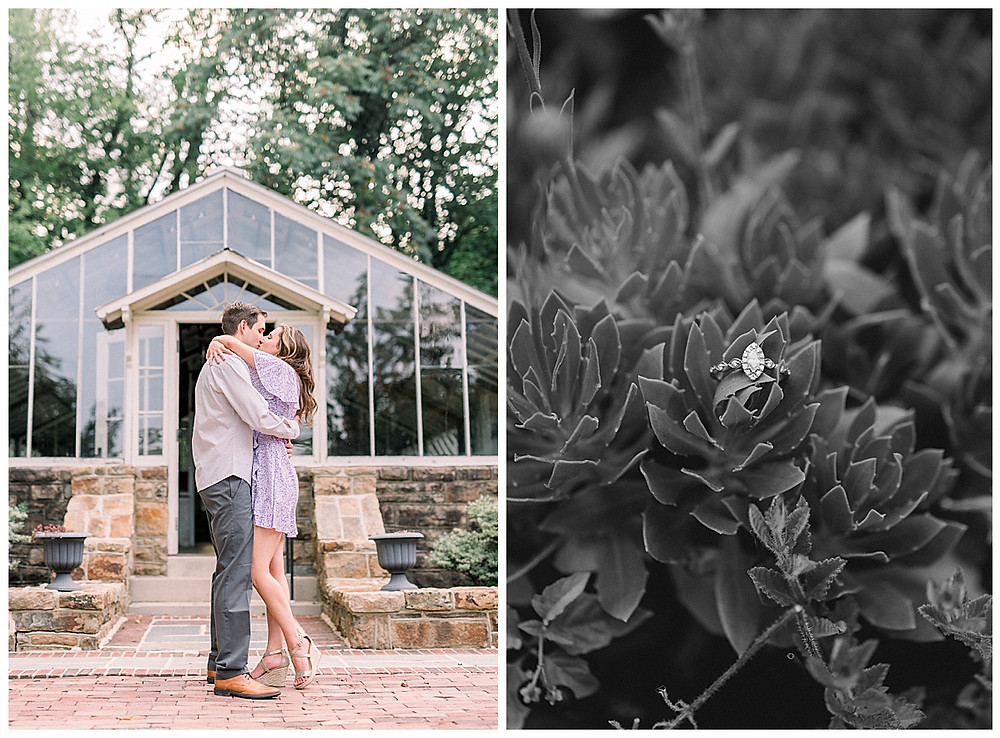 An engaged couple kissing and an engagement ring in a bush at Historic Shady Lane