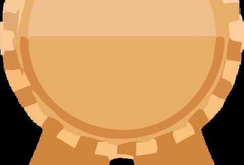 Cota Bronze