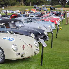 The Concours