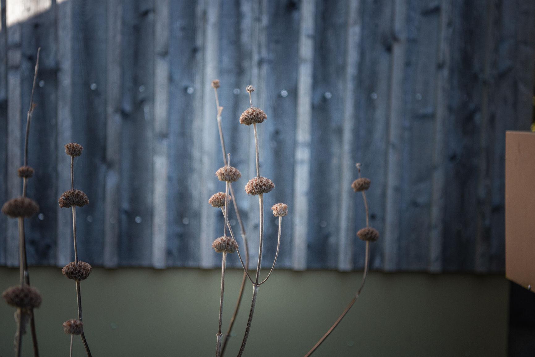 Fotografie © Karin Nussbaumer, Natur