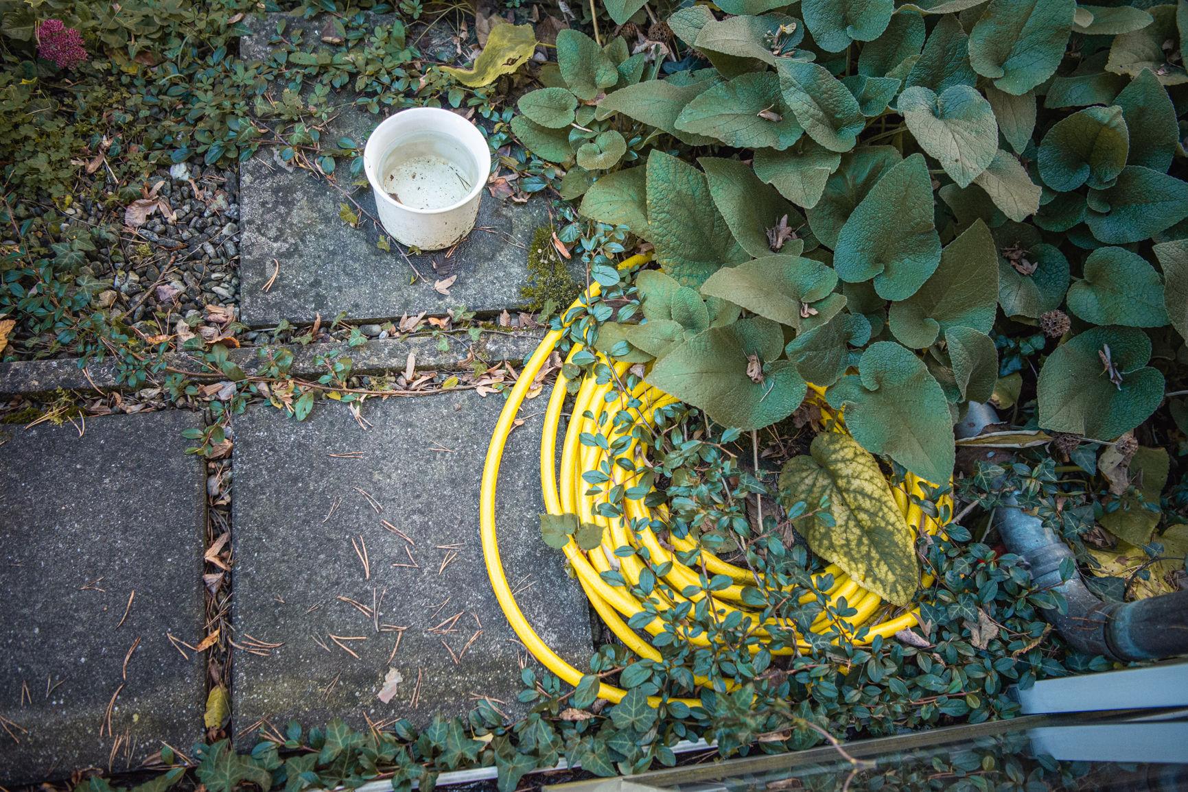 Fotografie © Karin Nussbaumer, gelber Gartenschlauch