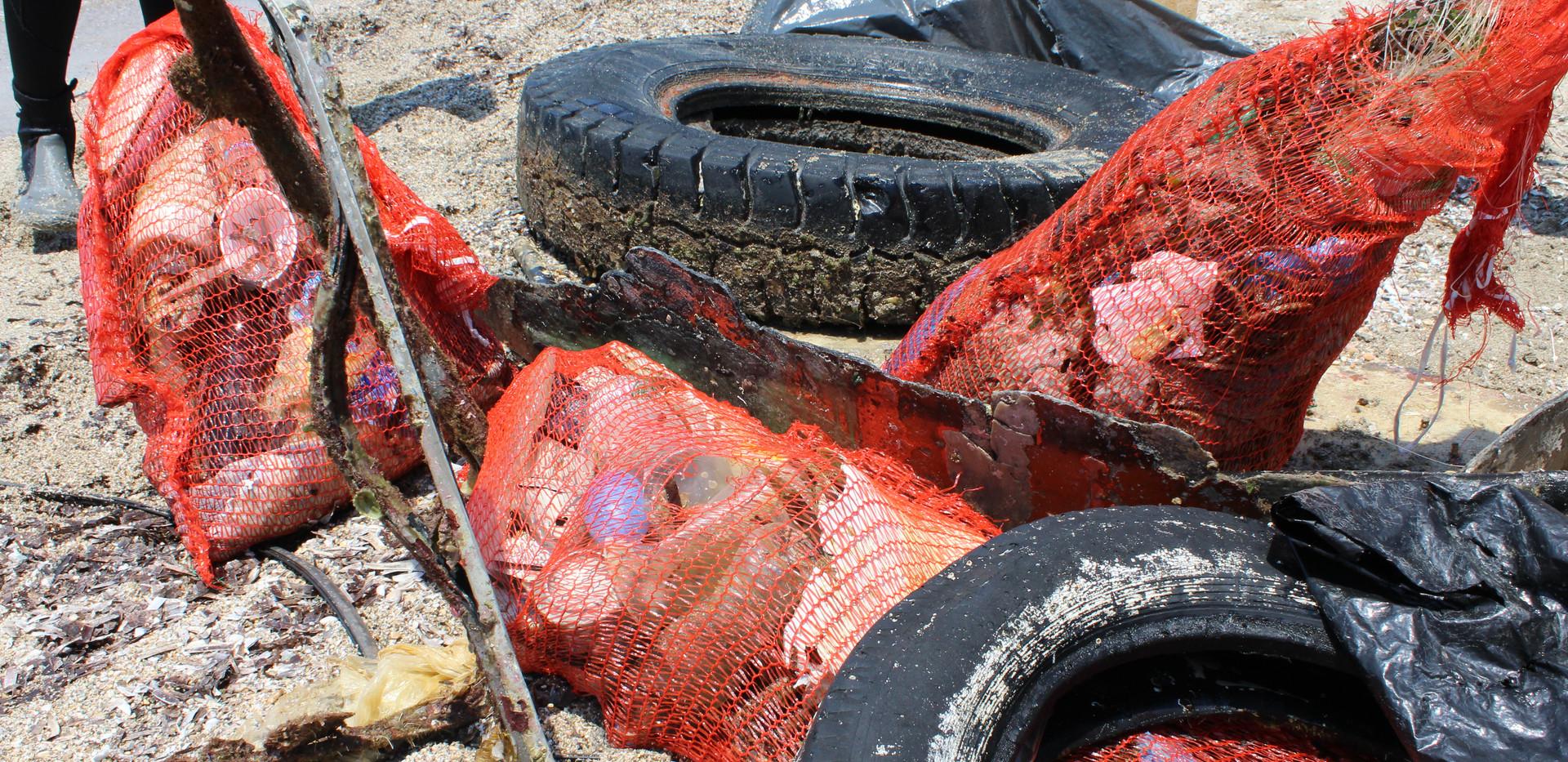 nhsa beach cleanup portes magazine 5