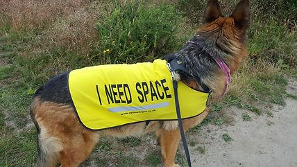 nessa - i need space pic.jpg