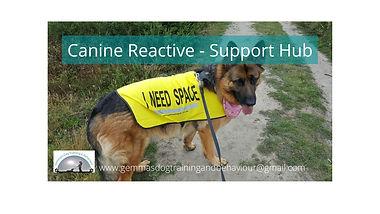 Canine Reactive - Support Hub.jpg
