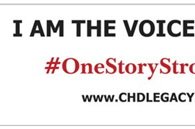 Bumper Sticker Large: Voices of CHD