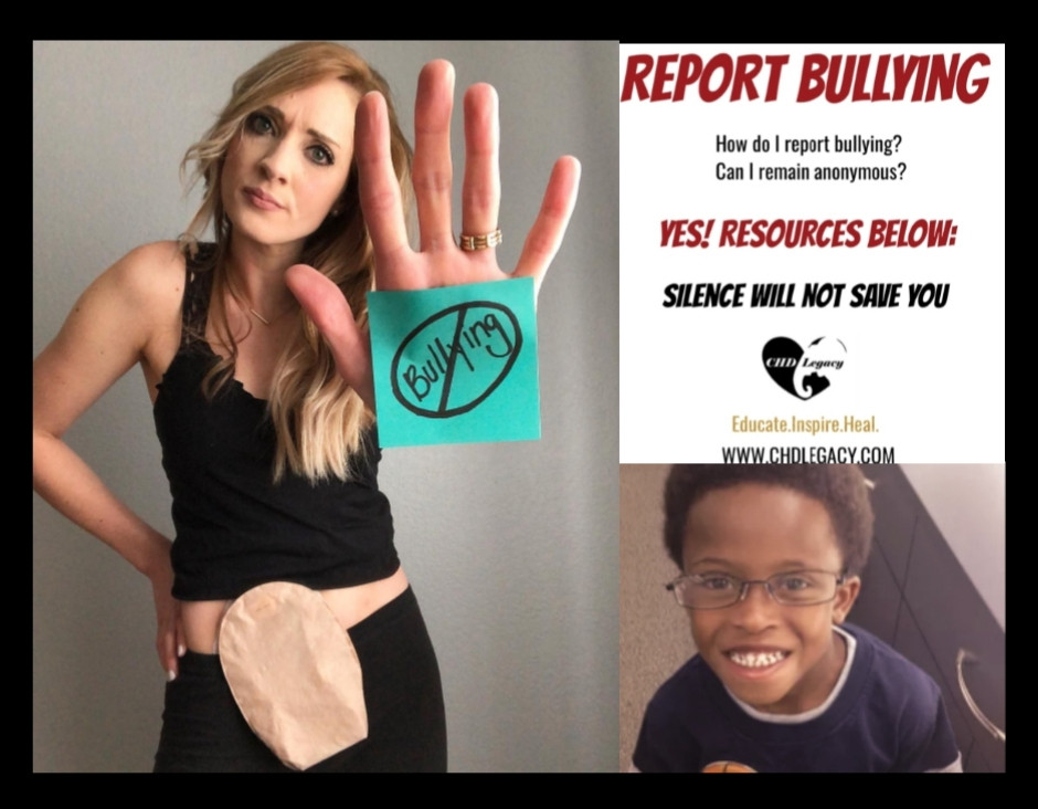 Eleanor Brown. Seven Bridges. Stephanie Romer. Bullying Kills Blog. Suicide. Report Bullying, Disability Human Rights, born with VSD, Pulmonary Stenosis, TOF, tetralogy of Fallot, Coarctation of the Aorta, COA, pulmonary atresia, pulmonary hypertension,  Nationwide Children's Hospital, Lucile Packard Children's Stanford, St. Joseph's Hospital, Arterial Switch, doctor, Glenn, Fontan, Norwood, doctor, transposition of great arteries, vessels, left superior vena cava, patent ductus arteriosus, truncus arteriosus, ebstein's anomaly, warrior, digeorge syndrome, down syndrome, heart transplant, donor, organ donor, survivor, HLHS, HRHS, TGA, complex chd, Hypoplastic Left Heart Syndrome, Single ventricle, Congenital Heart Disease, Congenital Heart Defect, service dog, Stephanie Romer, chd adult, chd baby, chd, wheelchair, disability, disabled, ng tube, icu, UCLA congenital, Ahmanson, Kurt Daniels, Joel Hardin, Texas Children's Hospital, tachycardia, bradycardia, pregnancy, abortion, OHS, open heart surgery, heart surgery, heart disease, AHA, american heart association, project heart, adult congenital heart association, ACHA, CHD Legacy, blog, Voices of CHD, chdlegacy, one story stronger, onestorystronger, stories, news, miracle, scars, scars are beautiful, rock your scar, bullying, advocate, speaker, jimmy kimmel, ed helms, katherine heigl, billy kimmel
