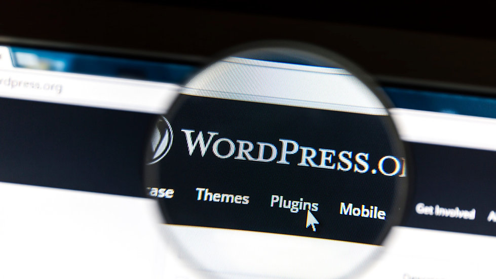 WordPress%202_edited.jpg