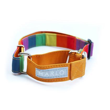 Collar Martingale Arcoiris Impermeable