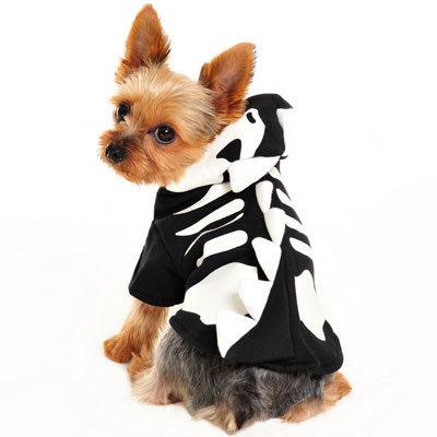 DOGO Dragon Skull sweater