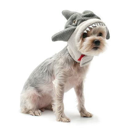 DOGO Shark Hat