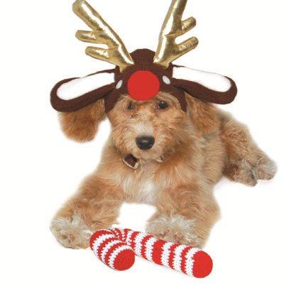 DOGO Reindeer Hat