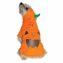 DOGO Pumpkin sweater