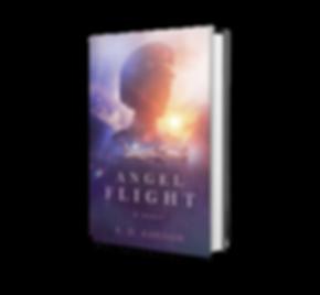 AngelFlight_3D.png